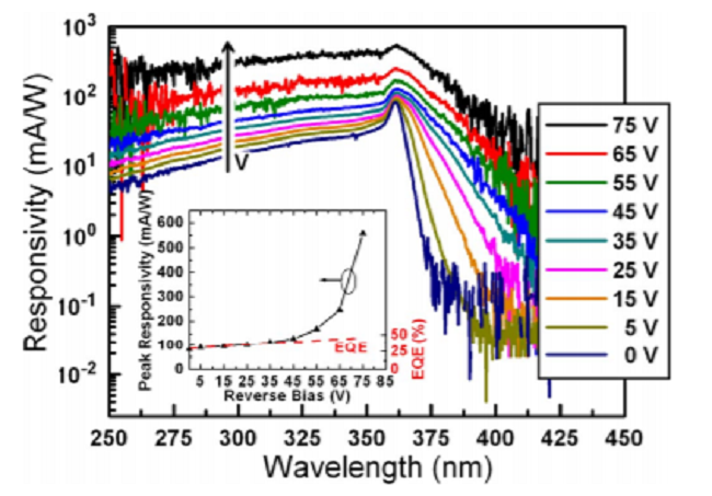 Scaling in back-illuminated GaN avalanche photodiodes